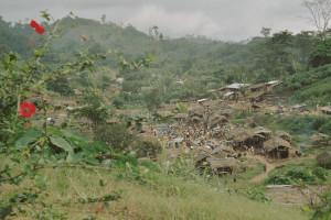 KOTOKA village 2004